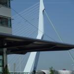 Rotterdam_Erasmusbridge